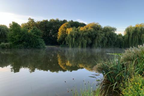 Maunsel Ponds