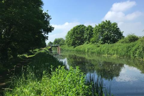 Taunton & Bridgwater Canal